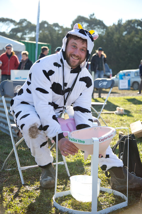 Speed milking at Hilux NZ Rural Games