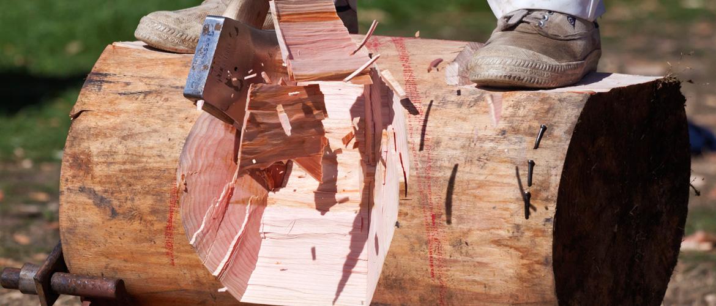 wood chopping new zealand rural games