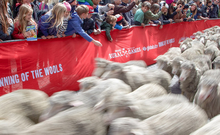 The Running of the Wools & Manchester St races