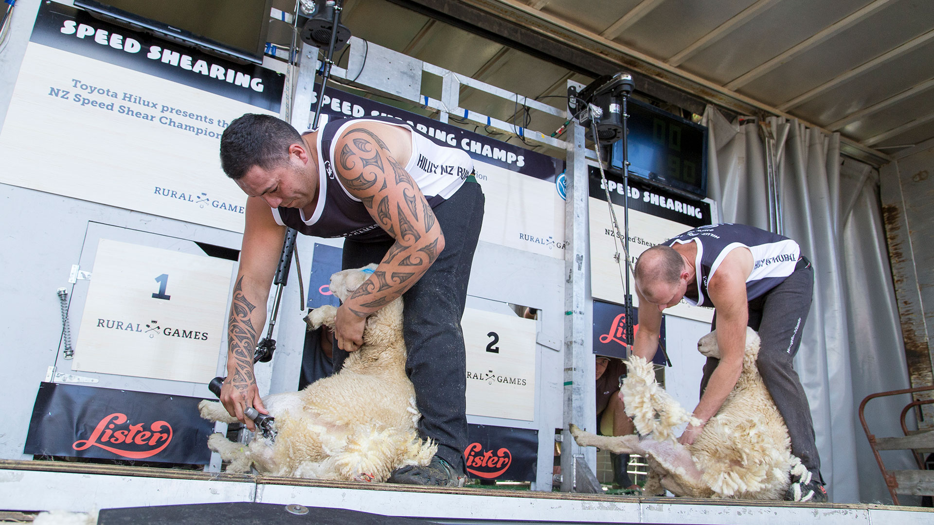 New Zealand Speed Shearing Championship Te Tatawhainga