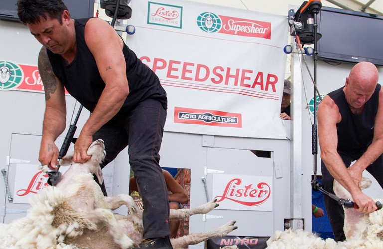 New Zealand Speed Shear Championship