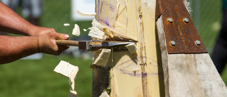 wood chopping championships
