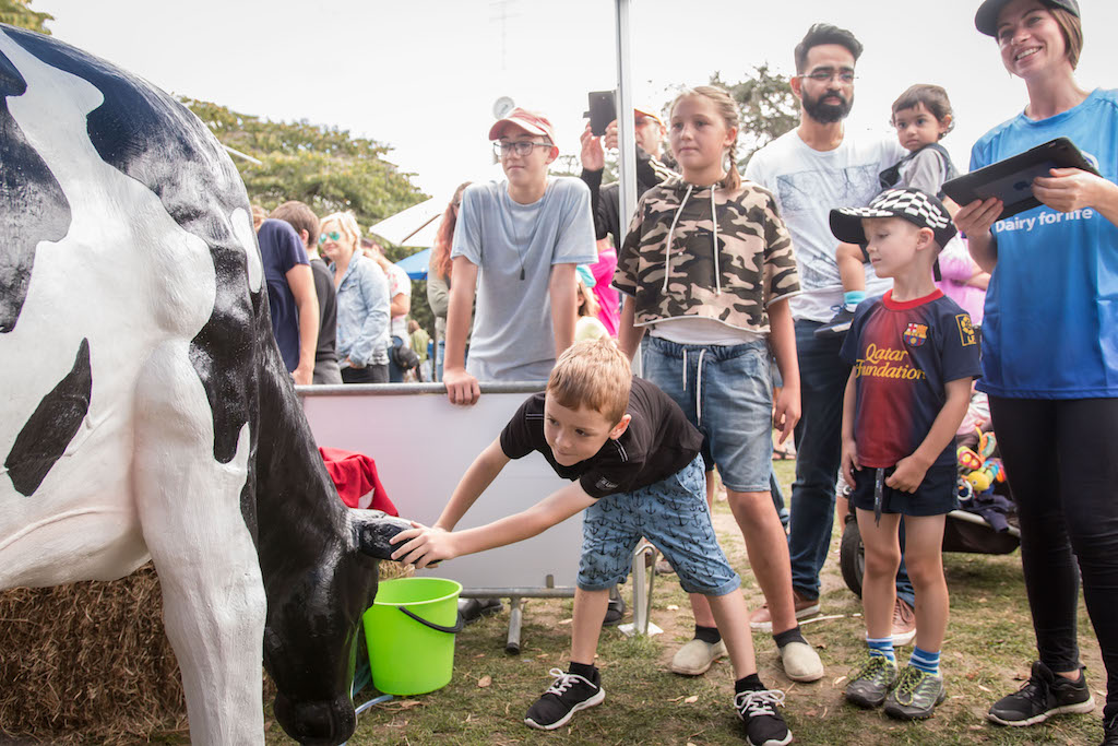Boy looking at cow