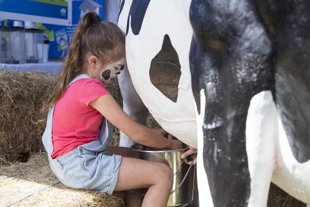 Girl Milking Cow