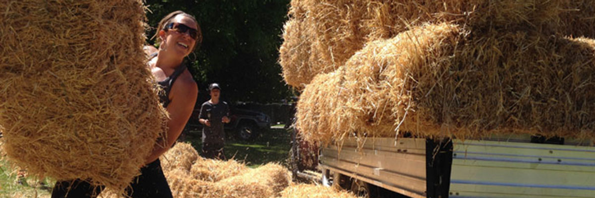 Haystacking Event
