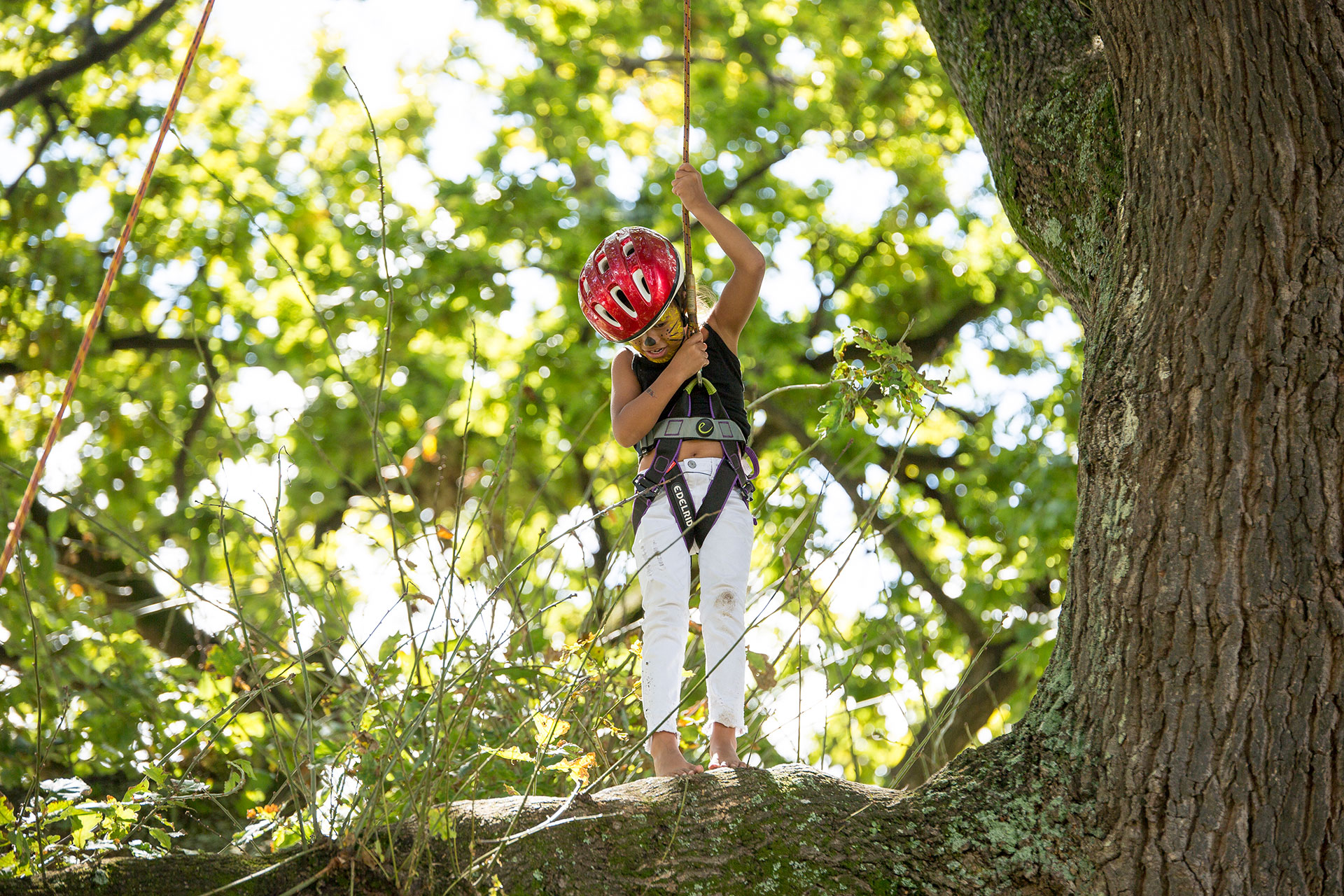Young Girl Tree Climbing