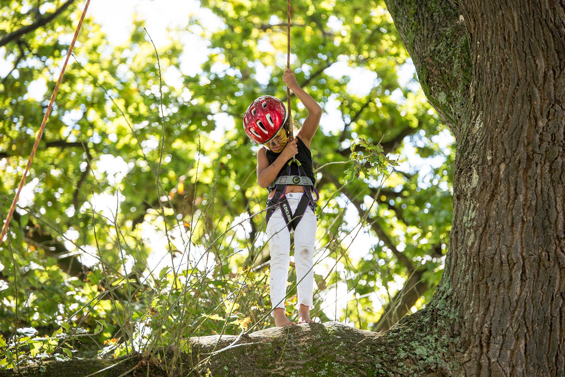 Young Girl Tree Climbing